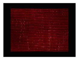 Bracelets LOOM - Design textile by Myriam Balaÿ sans-titre-211 6 pièces Du proche et du lointain