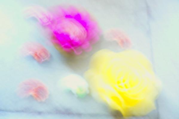 fleurbougie2