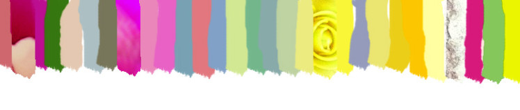 fleurbougiecolor