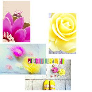 fleurbougiecompo.jpg