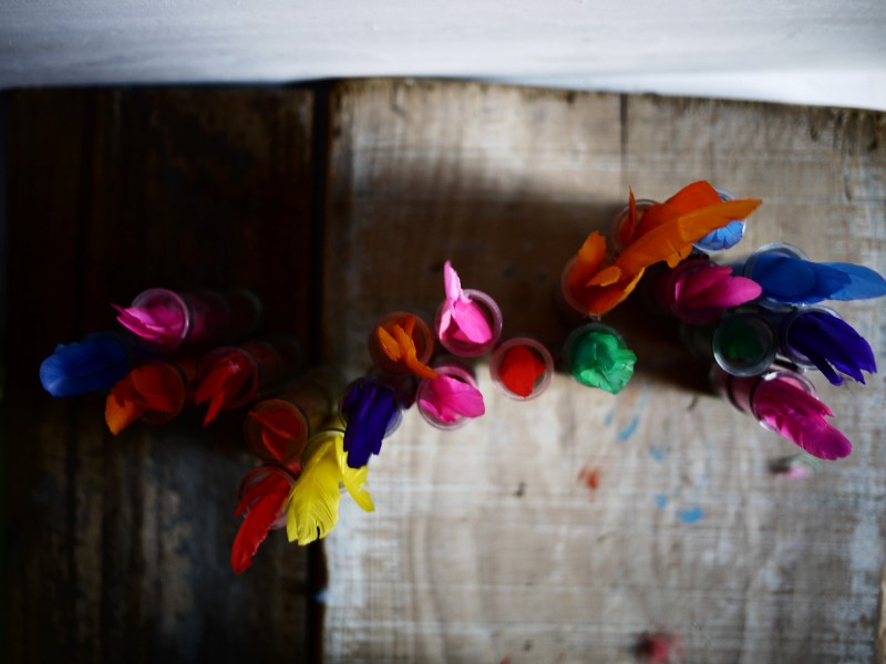 myriam-balay-plumes