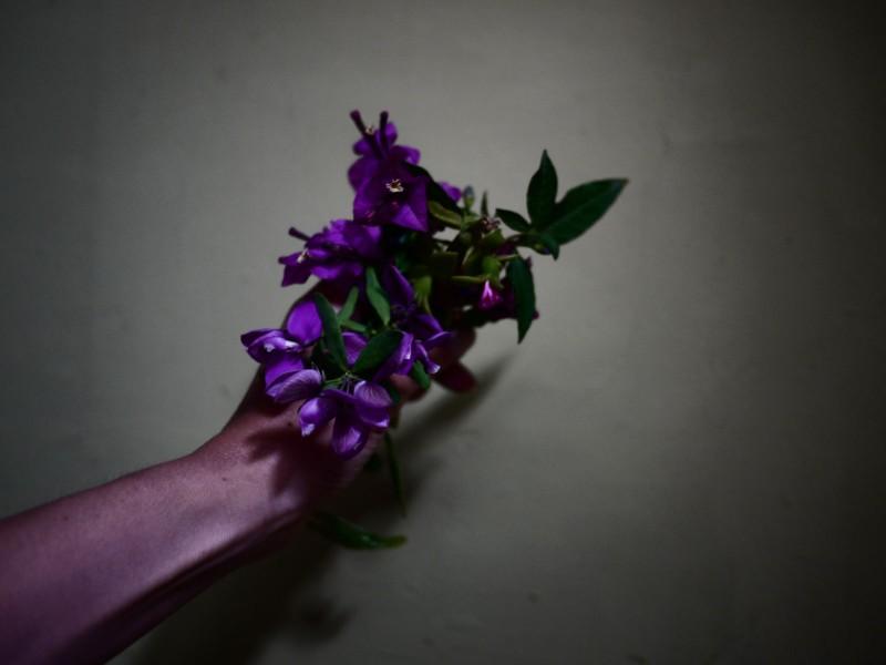 myriam-balay-purple